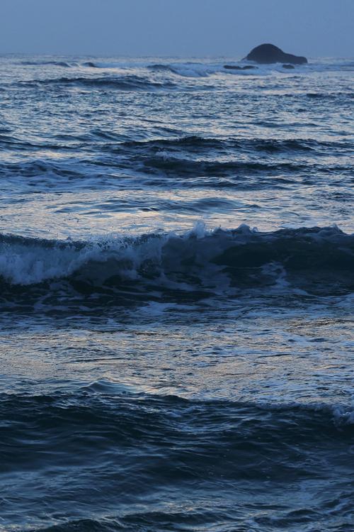 Denize gidip dönen mavilerin bire indirgenen üçlüğü.